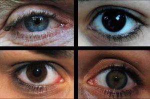 Ojos camiña.jpg